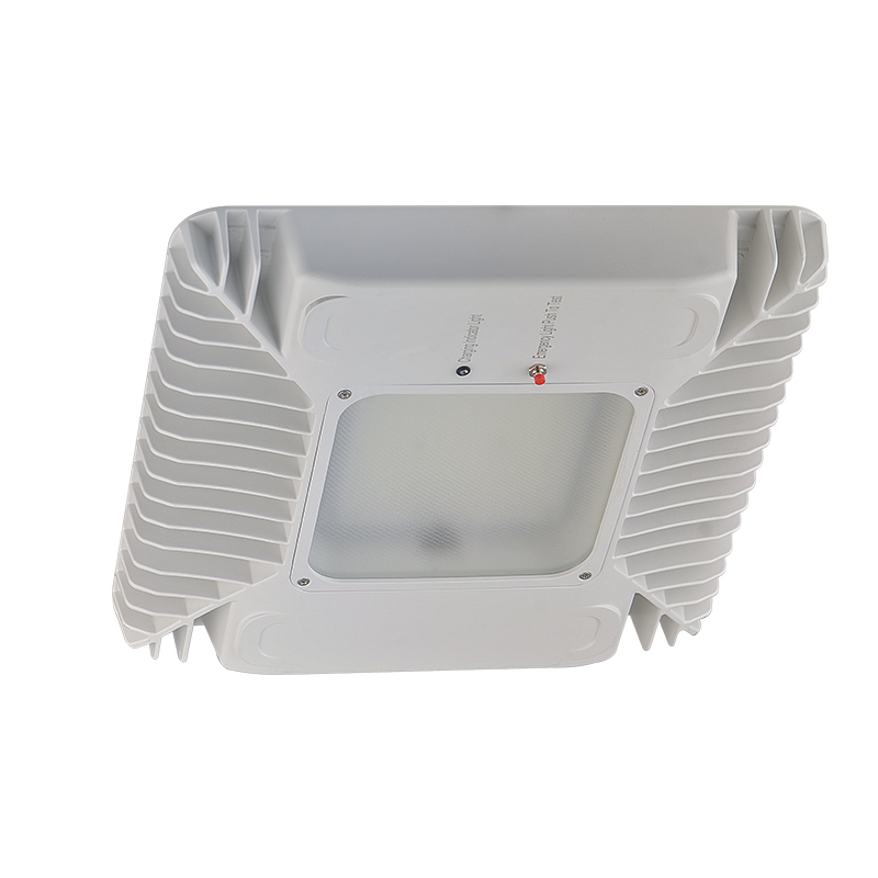 LED Canopy Light with Emergency Battery Backup